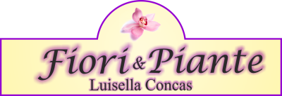 www.fioristaluisellaconcas.com