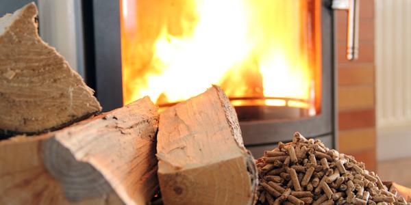 vendita legna e carbone ferrara