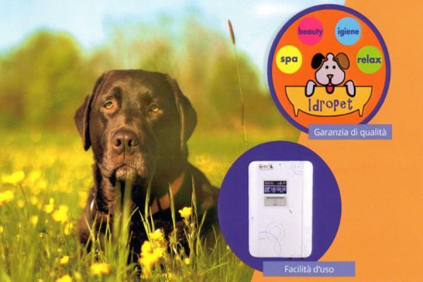 lavaggio con acqua ozonizzata per cani e gatti