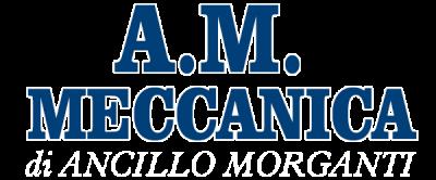 www.ammeccanica.com