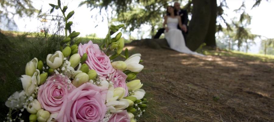 Sala per matrimoni e cerimonie - Gli Oleandri | Ozieri