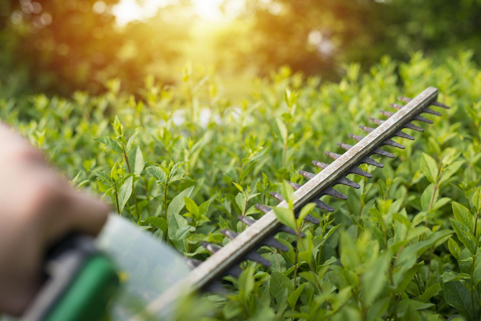 Riparazione attrezzature giardinaggio