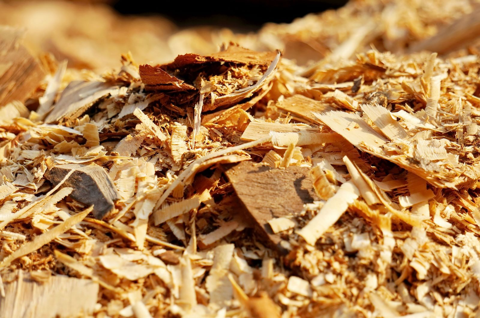 vendita trucioli legno depolverati mantova