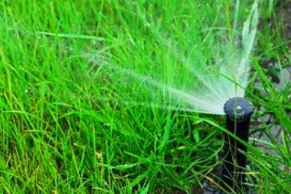 Irrigazione Trapani piante