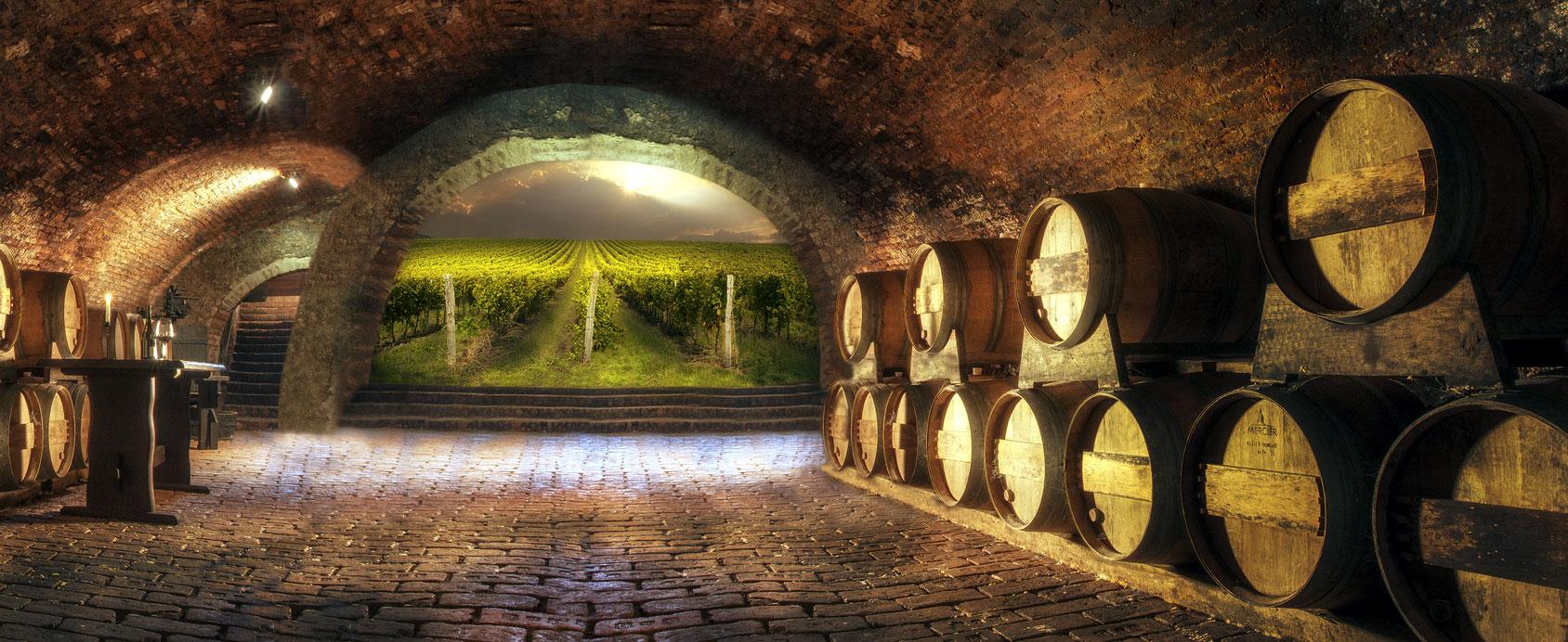 cantina vinicola lonato bs