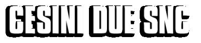 www.agenziacesinidue.com