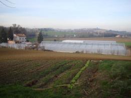 Azienda agricola Senigallia