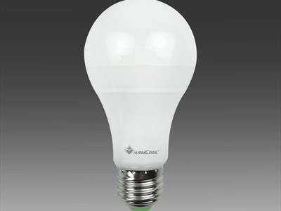 lampadine elettrocentro Jesi