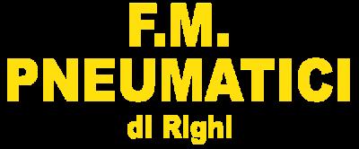 www.fmpneumaticirighi.com