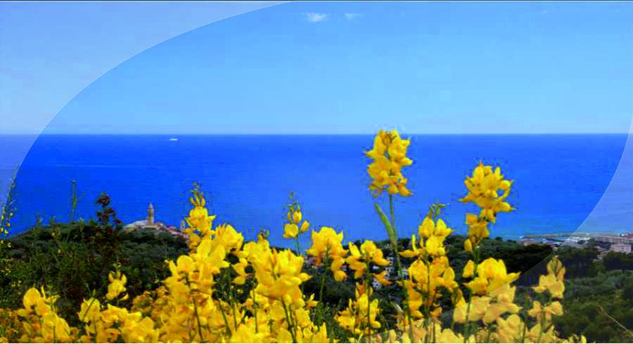 Vacanze al Mare a Sanremo in Riviera dei Fiori Riviera Ligure | Case Vacanza a Sanremo (Imperia)
