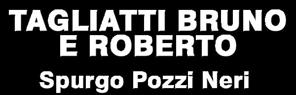 www.pozzinericomacchio.com
