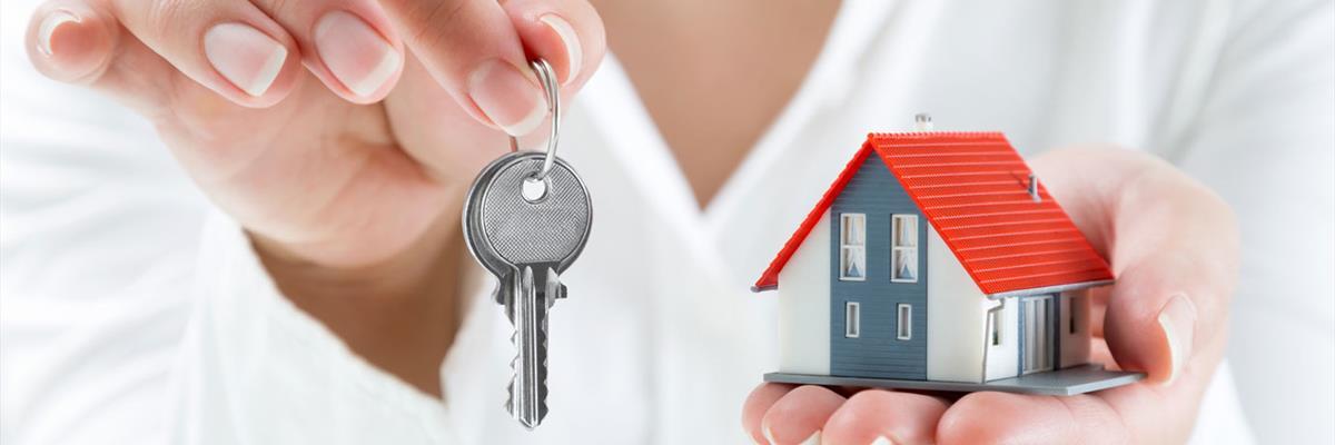 Amministrazione immobili e condomini