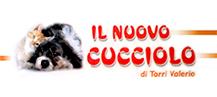 Logo il nuov cucciolo