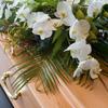 onoranze funebri f.lli cusenza