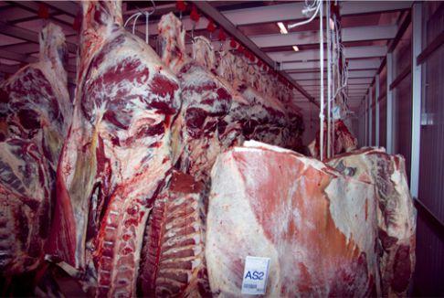 macellazione carne trapani