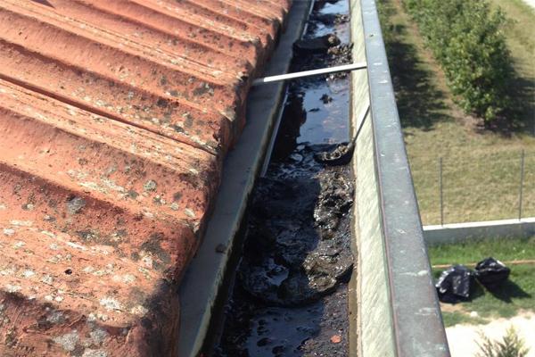 pulizia grondaie Ferrara