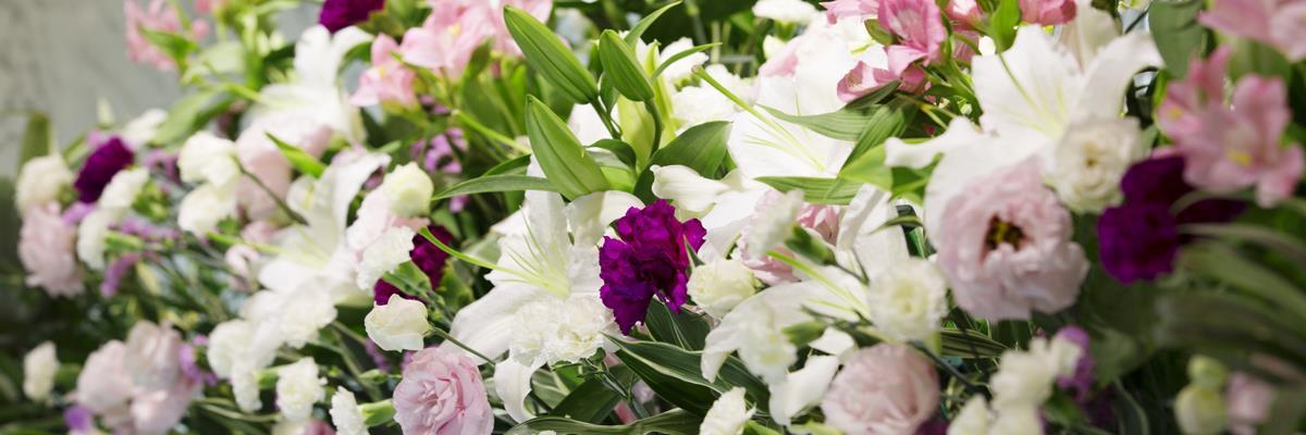 Vendita fiori Cisano Bergamasco Bergamo