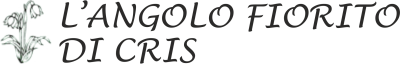 www.langolofioritodicris.com