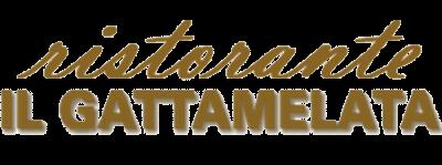 www.ristoranteilgattamelatanarni.com