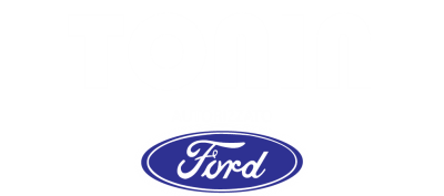 Logo Tonin Vicenza