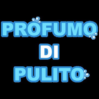www.lavanderiaprofumodipulito.net