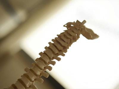 Ortopedico Terni
