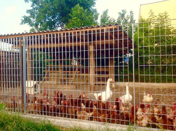 azienda agricola vicino Brescia