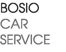 www.autocarrozzeriabosio.it