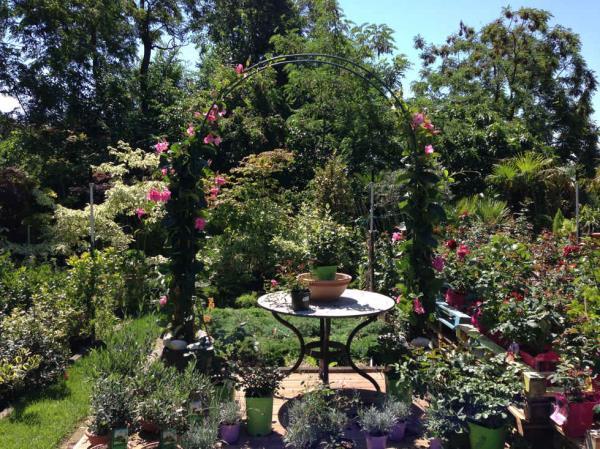 progettazione giardini Trieste