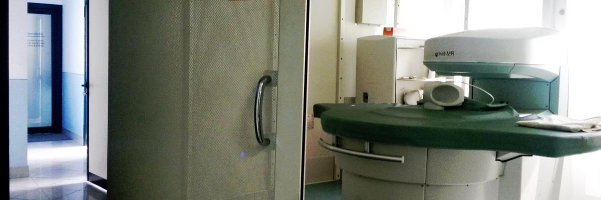 Indagini diagnostiche veterinarie Cambiano Torino