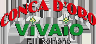 www.vivaioconcadoro.it