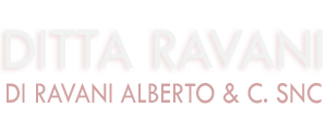 www.ravanibilance.it
