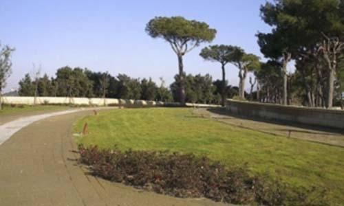 Manutenzione verde pubblico vivai mari roma nord