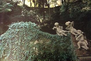 manutenzione giardino storico villa madama vivai mari roma nord stadio olimpico