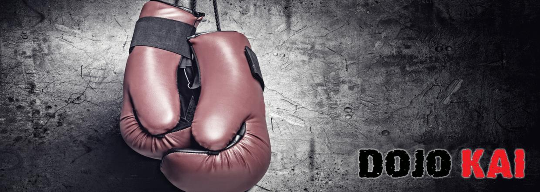 Sport da combattimento Torino