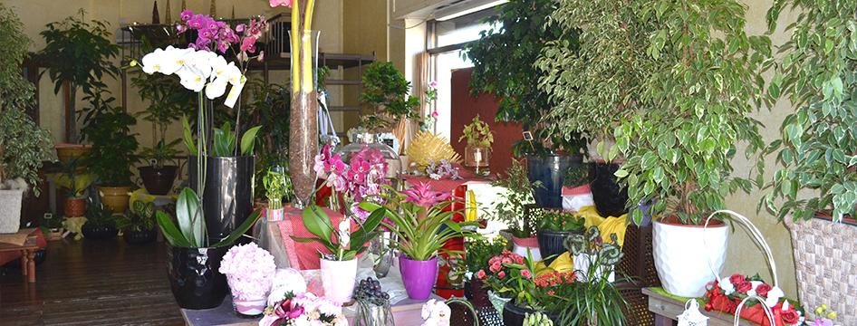 consegna fiori Cagliari