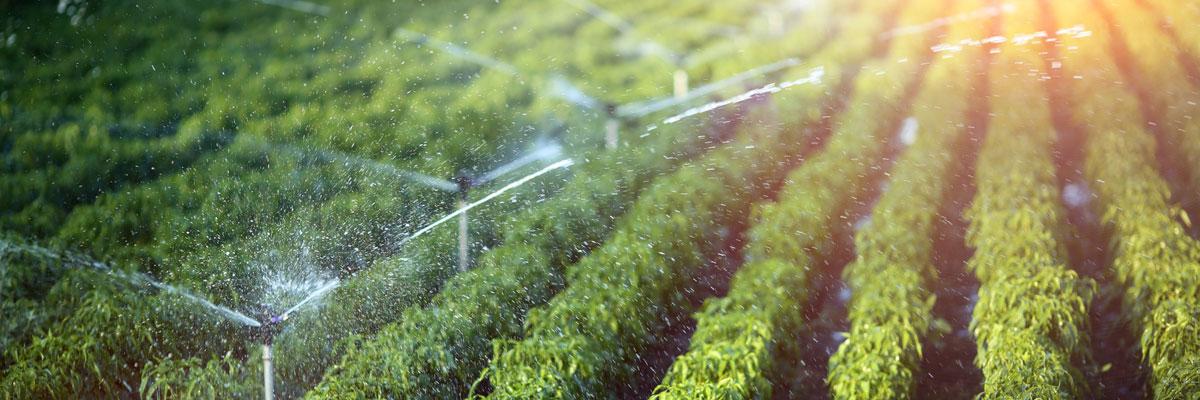 irrigatori automatici cremona