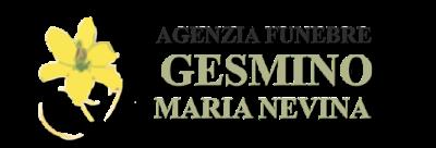 www.agenziafunebregesmino.com