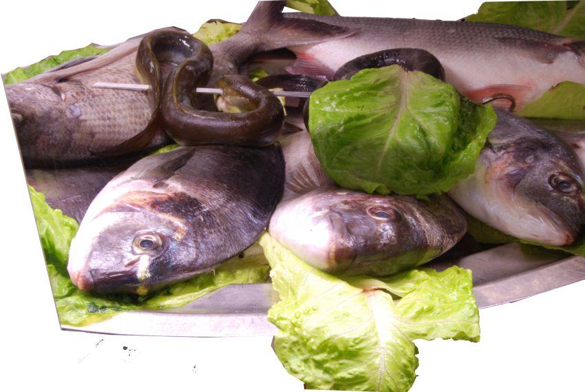 Specialità carne e pesce alla brace