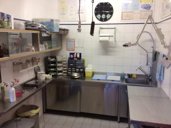 Esami di laboratorio veterinario Bergamo