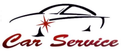 www.carserviceversilia.com