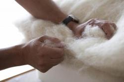 Rifacimento materassi in lana Fontanellato Parma; rifacimento cuscini Fontanellato Parma; rifacimento materassi Fontanellato Parma
