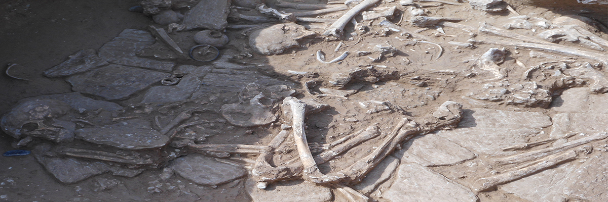 scavi