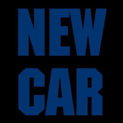 www.autocarrozzerianewcarcapannori.com