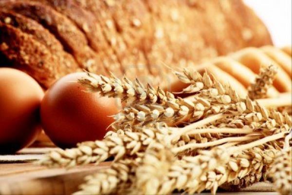 F.LLI LORU ORISTANO| prodotti per pasticcerie, panifici e gelaterie Oristano Sardegna