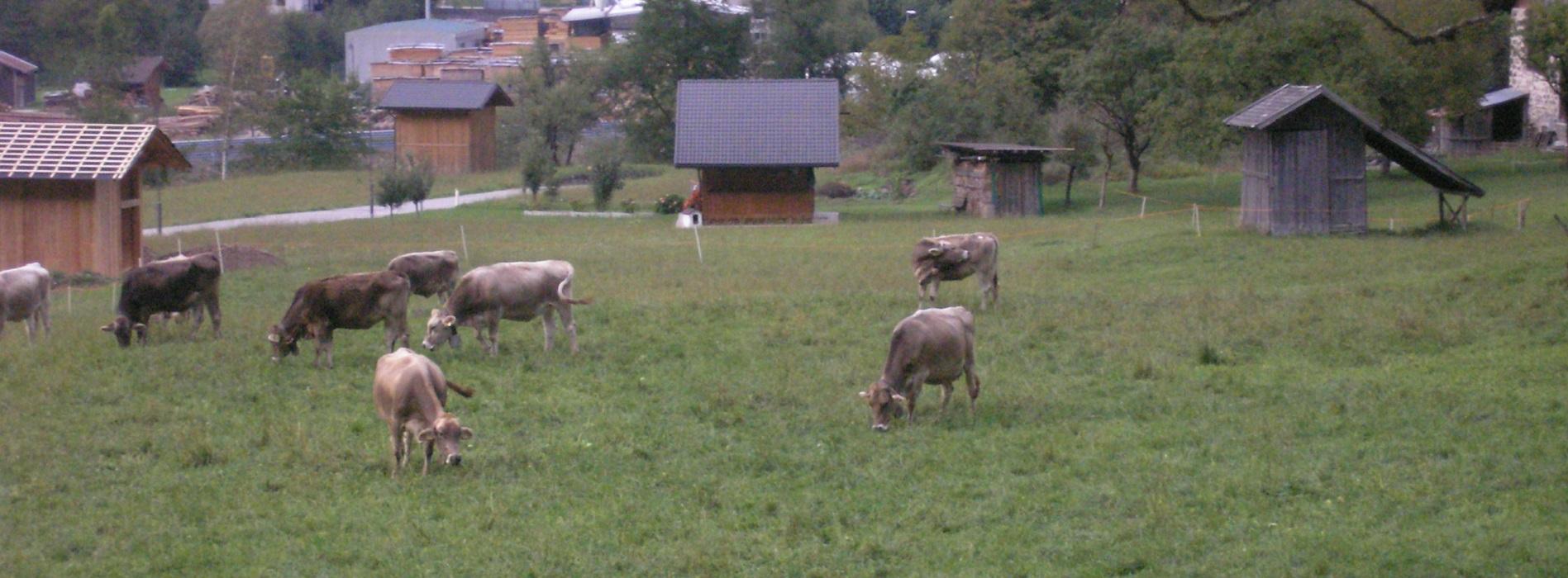 mansarda vacanza Dolomiti