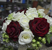 Rose bianche rosse