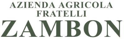 www.fratellizambon.com