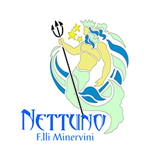 www.ristorantepizzerianettuno.com