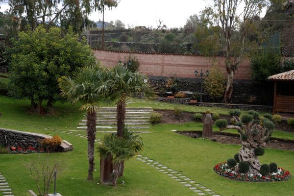 Manutenzione realizzazione giardini Catania